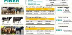 Ready to eat Feed for Cow/Buffalo/Sheep/Goat/Camel/Horse, for Hobby Dairy or Meat farm Hydarabad
