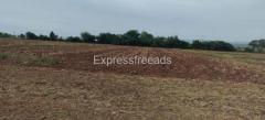 72 cents 100 feet N-S × 315 feet E-W  East facing road site Land for sale In Kadapa Andra Pradesh