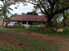 24 Acre Coconut Farm For Sale In Hassan district Karnataka