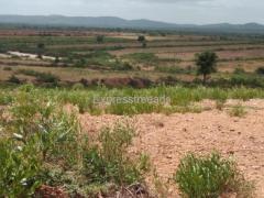 20 acre Farm Land For Sale NH4 Highway 20 km Hiriyuru Karnataka