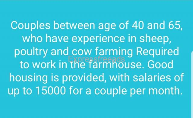 Job available for Farmer couple with housing in Bangalore Hoskote