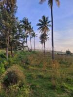 30 gunta of farmland for rent at Devanahalli airport next to Airport compound