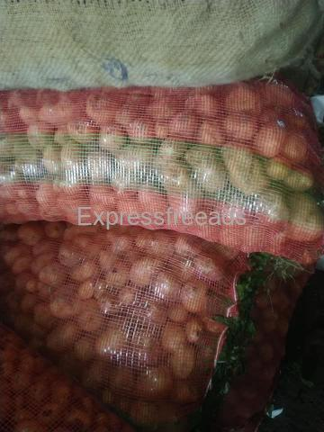 All Type Of Vegetables Available For Sale In Chikmagalur Karnataka