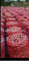 Onions for Sale Chitradurga Karnataka