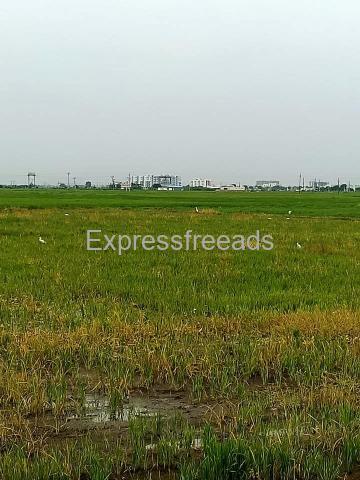 Agriculture Land For Sale In Karnool District Andhra Pradesh