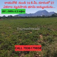 Agriculture land for sale near Rayachoty 27 Acres
