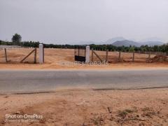 Open Plots available on Appalayagunta road near tirupati