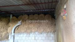 dry cow grass For Sale in Jagtial District Telangana