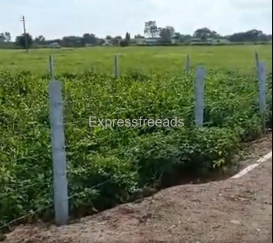2 acres agricultural land in Balanagar near shadnagar Hyderabad