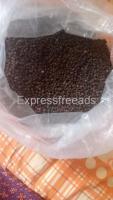 Organic Black Pepper For Sale In Coorg Karnataka
