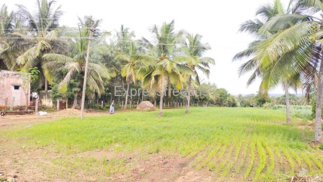 1 Acre 18 Guntas Agriculture farmland Harohalli Karnataka