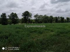 7.5 Acre Agriculture Land For Sale In Mysore Road Karnataka