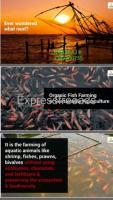 Biofit fish farming