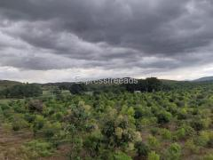*78Acres of Land for Sale